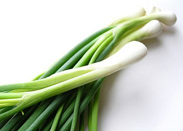 Lovely picture from a Lebanese Cooking Blog: http://homemade-recipes.blogspot.com/2009/10/green-onions.html